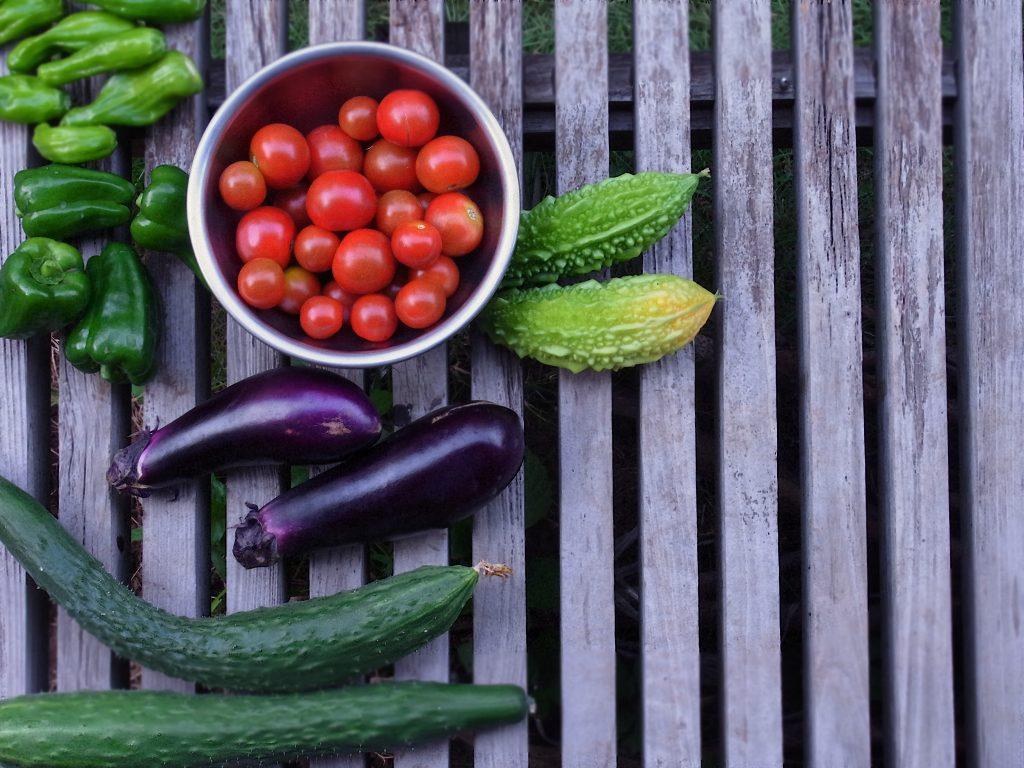 voeding en knieartrose