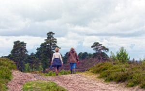 actief lopen en knieartrose