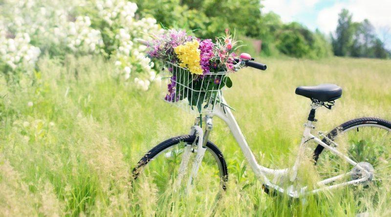 elektrische-fiets-knieartrose
